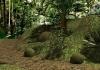 מרוץ בג׳ונגל