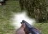 ירי בתרנגול הודו
